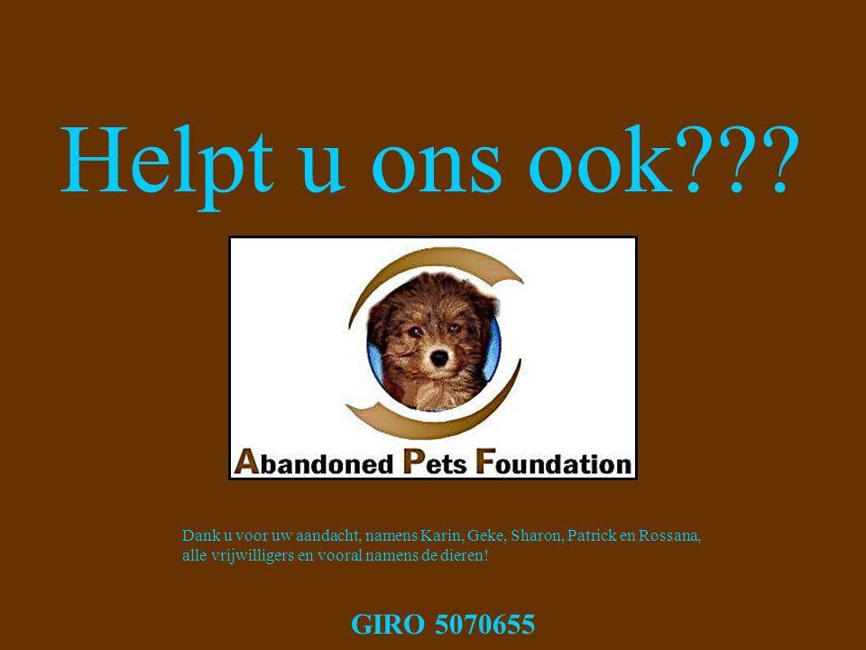 Helpt u ons ook??? Dank u voor uw aandacht, namens Karin, Geke, Sharon, Patrick en Rossana, alle vrijwilligers en vooral namens de dieren! GIRO 507065