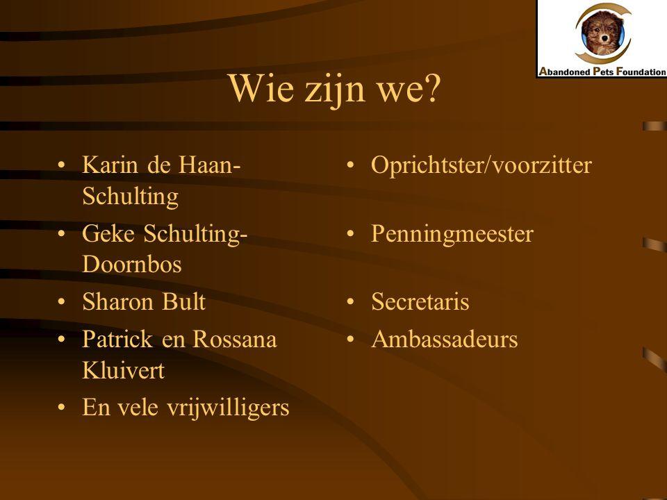 Wie zijn we? Karin de Haan- Schulting Geke Schulting- Doornbos Sharon Bult Patrick en Rossana Kluivert En vele vrijwilligers Oprichtster/voorzitter Pe