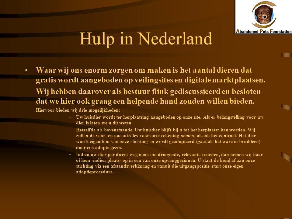 Hulp in Nederland Waar wij ons enorm zorgen om maken is het aantal dieren dat gratis wordt aangeboden op veilingsites en digitale marktplaatsen. Wij h