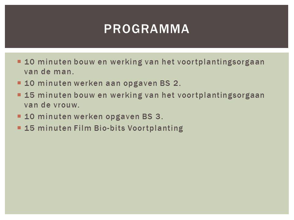  10 minuten bouw en werking van het voortplantingsorgaan van de man.  10 minuten werken aan opgaven BS 2.  15 minuten bouw en werking van het voort