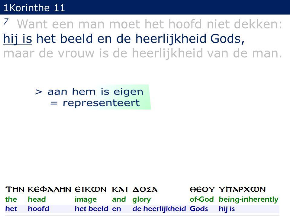 1Korinthe 11 7 Want een man moet het hoofd niet dekken: hij is het beeld en de heerlijkheid Gods, maar de vrouw is de heerlijkheid van de man. 32