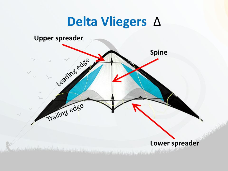 Delta Vliegers Δ Leading edge Trailing edge Upper spreader Lower spreader Spine