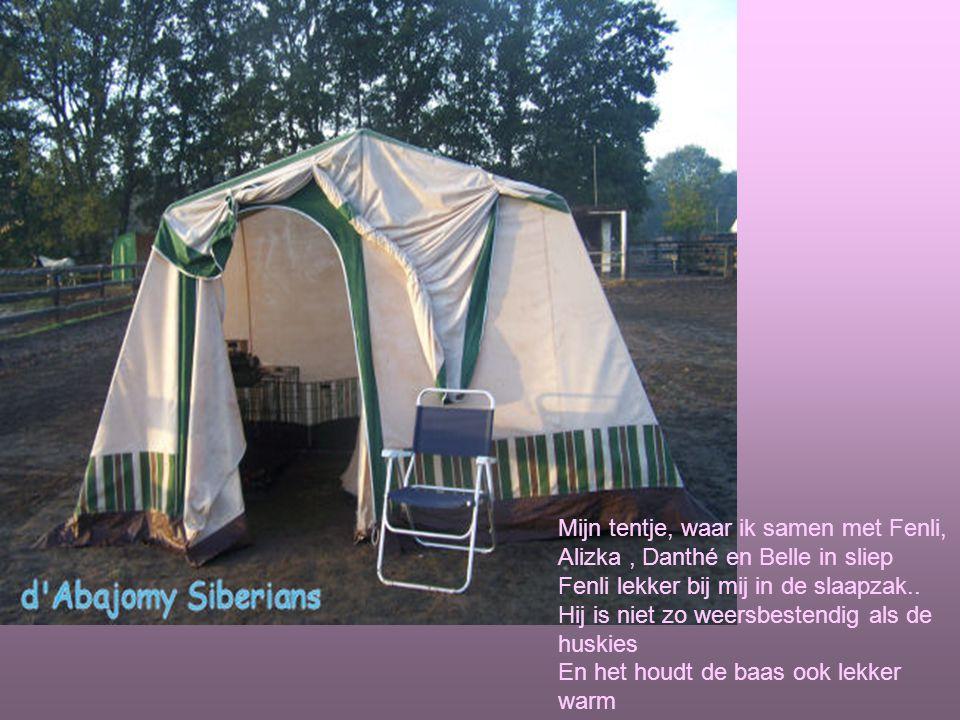Mijn tentje, waar ik samen met Fenli, Alizka, Danthé en Belle in sliep Fenli lekker bij mij in de slaapzak..