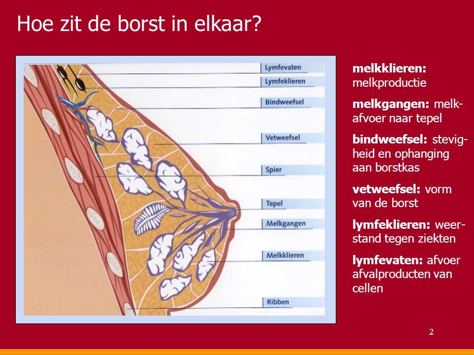 Hoe zit de borst in elkaar? melkklieren: melkproductie melkgangen: melk- afvoer naar tepel bindweefsel: stevig- heid en ophanging aan borstkas vetweef