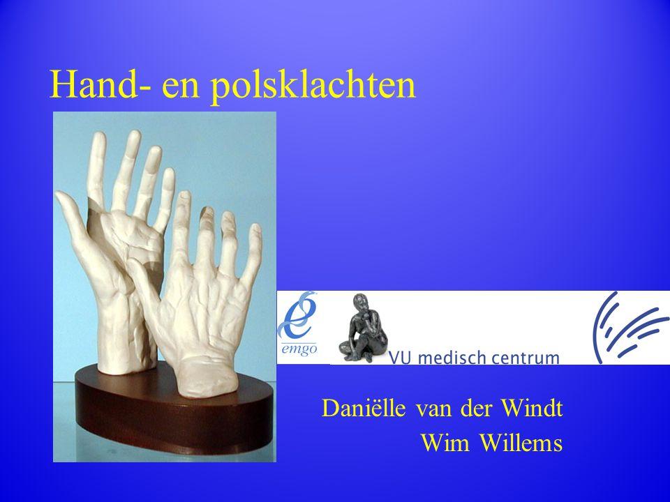 Hand- en polsklachten Daniëlle van der Windt Wim Willems