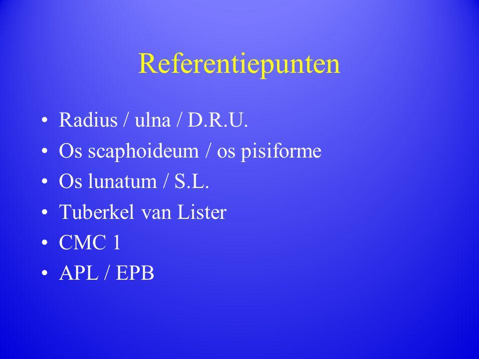 Referentiepunten Radius / ulna / D.R.U. Os scaphoideum / os pisiforme Os lunatum / S.L. Tuberkel van Lister CMC 1 APL / EPB