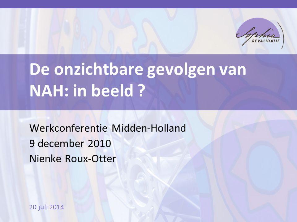 20 juli 2014 De onzichtbare gevolgen van NAH: in beeld ? Werkconferentie Midden-Holland 9 december 2010 Nienke Roux-Otter