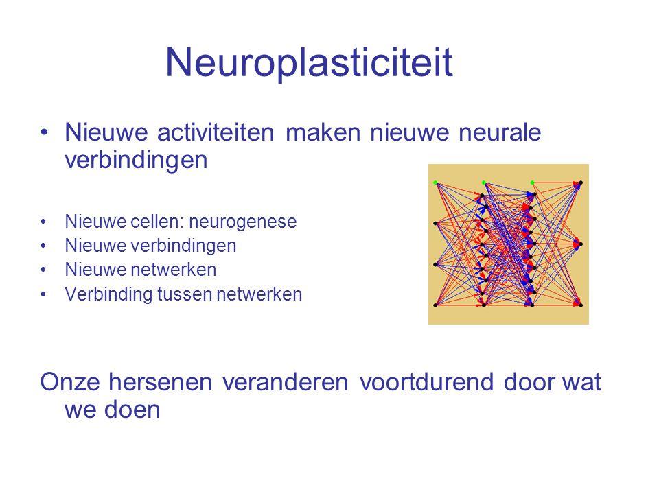 Neuroplasticiteit Nieuwe activiteiten maken nieuwe neurale verbindingen Nieuwe cellen: neurogenese Nieuwe verbindingen Nieuwe netwerken Verbinding tus