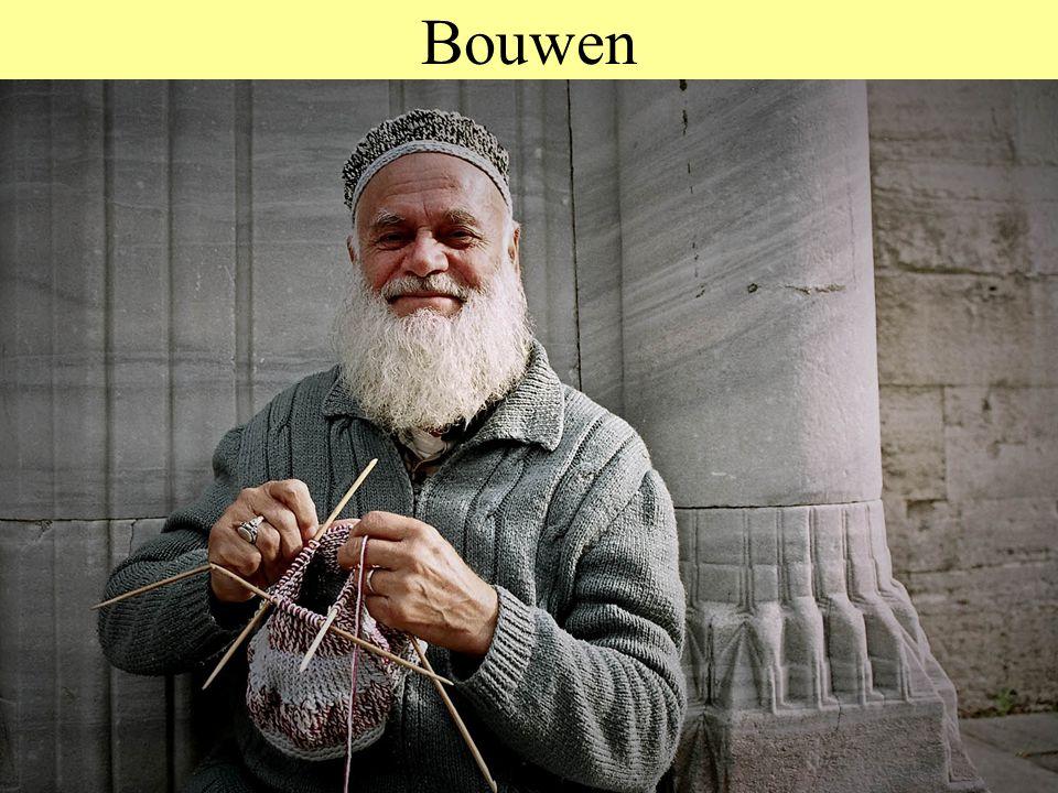 © 2012 JP van de Sande RuG Bouwen Bij dieren: Hol, Nest, Val, Dam Bij mensen: Huizen, Torens, Kantoren, Stadions, Follies, Reputaties, Competenties, W