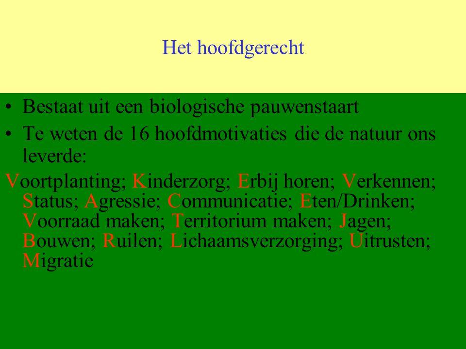 Het hoofdgerecht Bestaat uit een biologische pauwenstaart Te weten de 16 hoofdmotivaties die de natuur ons leverde: Voortplanting; Kinderzorg; Erbij h