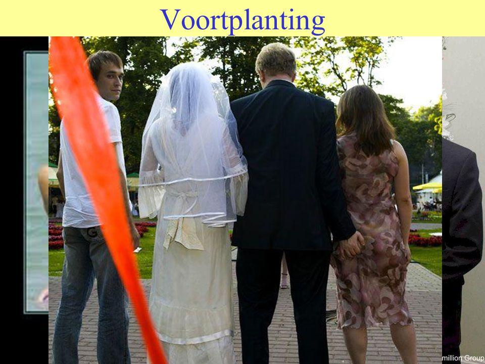 KORTOM EIGENLIJK NET ALS MANNEN WILLEN VROUWEN GEWOON GOED VOOR DE DAG KOMEN www.vandesandeinlezingen.nl