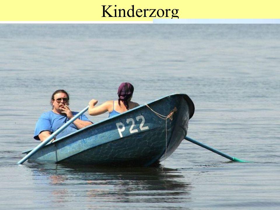 © 2012 JP van de Sande RuG Kinderzorg Bij dieren: temperatuur, voedsel, veiligheid, dingen voordoen Bij mensen: nutricia, billys, oilily, olvarit, nic