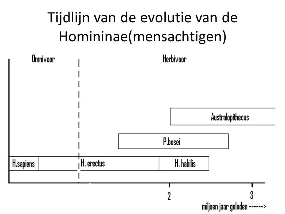 Tijdlijn van de evolutie van de Homininae(mensachtigen)