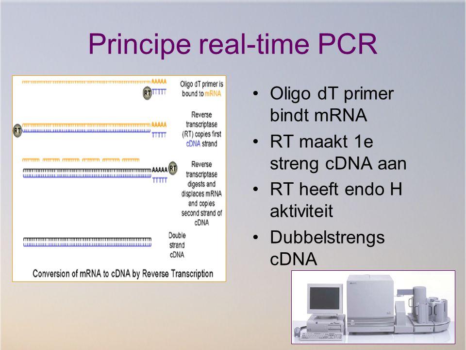 Principe real-time PCR Oligo dT primer bindt mRNA RT maakt 1e streng cDNA aan RT heeft endo H aktiviteit Dubbelstrengs cDNA