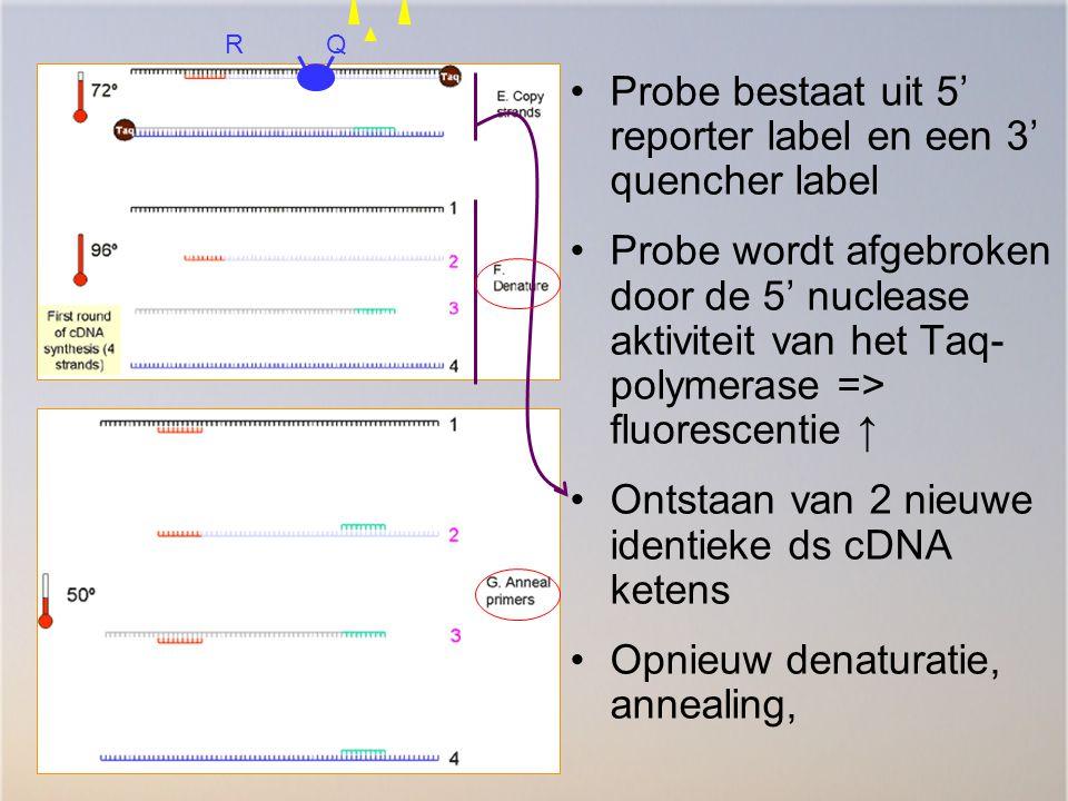 Probe bestaat uit 5' reporter label en een 3' quencher label Probe wordt afgebroken door de 5' nuclease aktiviteit van het Taq- polymerase => fluoresc