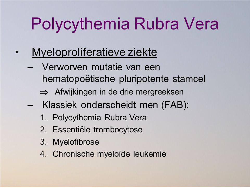 Polycythemia Rubra Vera Myeloproliferatieve ziekte –Verworven mutatie van een hematopoëtische pluripotente stamcel  Afwijkingen in de drie mergreekse