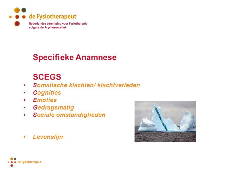 Specifieke Anamnese SCEGS Somatische klachten/ klachtverleden Cognities Emoties Gedragsmatig Sociale omstandigheden Levenslijn