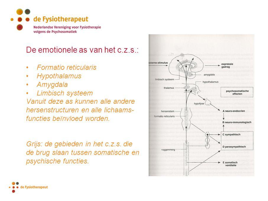 De emotionele as van het c.z.s.: Formatio reticularis Hypothalamus Amygdala Limbisch systeem Vanuit deze as kunnen alle andere hersenstructuren en all