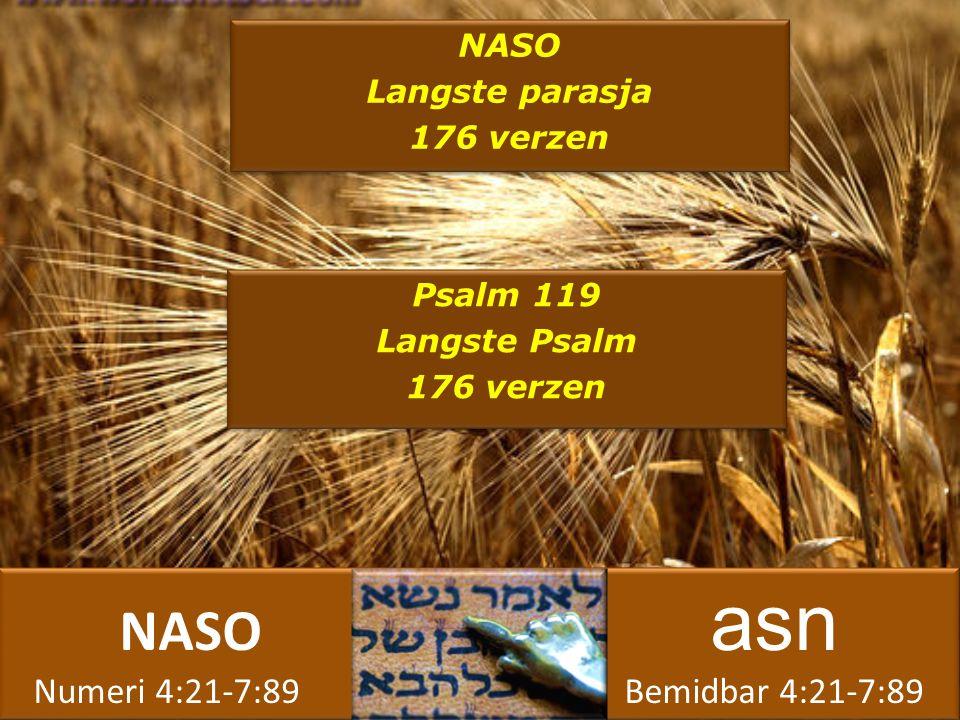NASO asn Numeri 4:21-7:89 Bemidbar 4:21-7:89 NASO asn Numeri 4:21-7:89 Bemidbar 4:21-7:89 NASO Langste parasja 176 verzen NASO Langste parasja 176 verzen Psalm 119 Langste Psalm 176 verzen Psalm 119 Langste Psalm 176 verzen