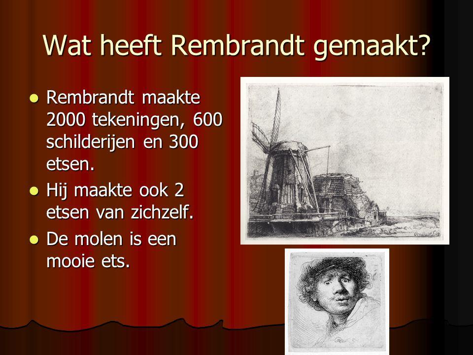 Wat heeft Rembrandt gemaakt? Rembrandt maakte 2000 tekeningen, 600 schilderijen en 300 etsen. Rembrandt maakte 2000 tekeningen, 600 schilderijen en 30
