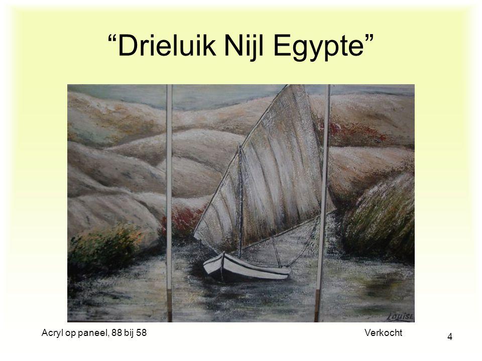 Acryl op paneel, 88 bij 58 Verkocht 4 Drieluik Nijl Egypte