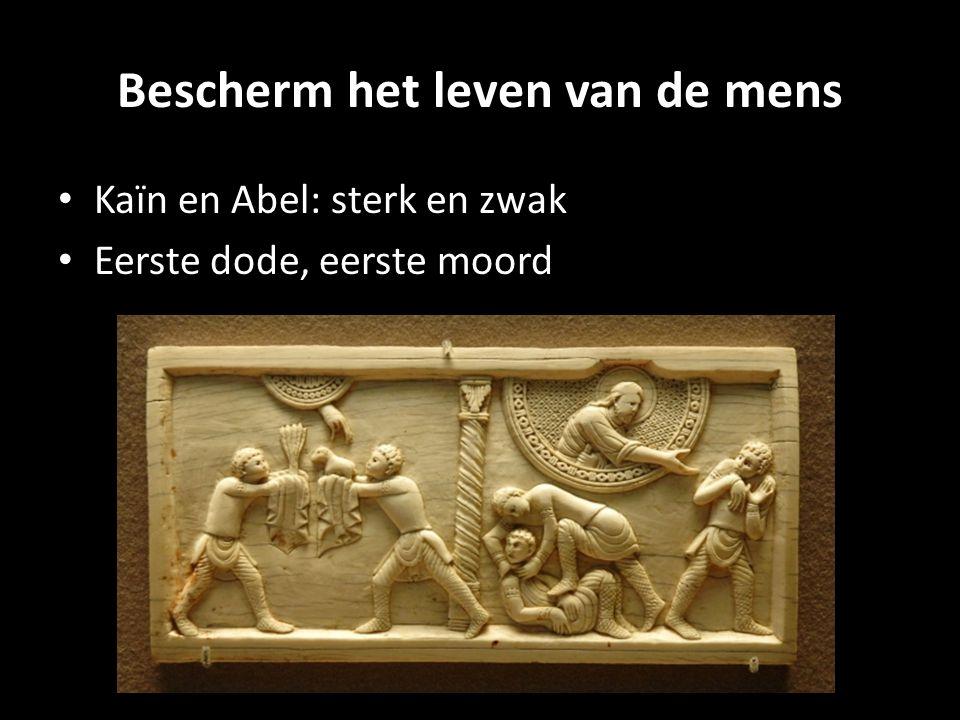 Bescherm het leven van de mens Kaïn en Abel: sterk en zwak Eerste dode, eerste moord