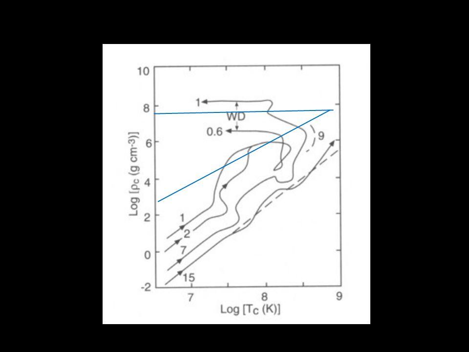 Witte dwergen Compacte objecten Druk opgewekt door gedegenereerde materie Leven eeuwig Hoe zien ze er vanbinnen uit.