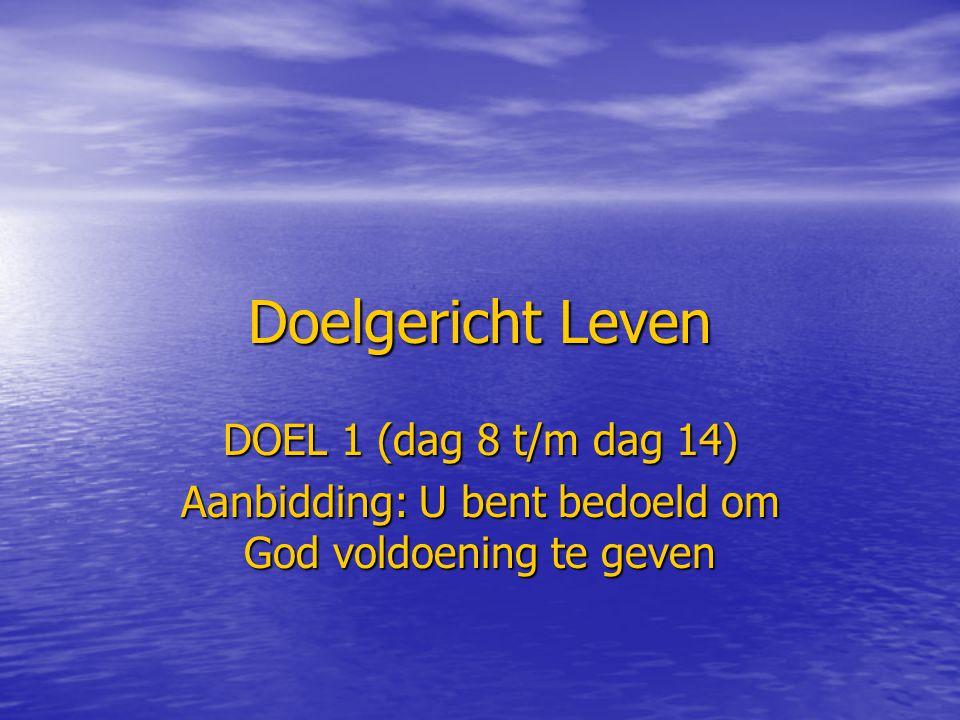 Doelgericht Leven DOEL 1 (dag 8 t/m dag 14) Aanbidding: U bent bedoeld om God voldoening te geven