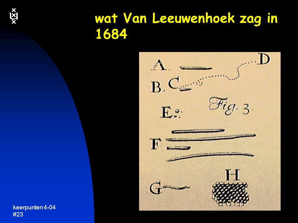 keerpunten 4-04 #22 kijken naar leven  Van Leeuwenhoek's microscoop tweede helft 17de eeuw preparaathouder lensje