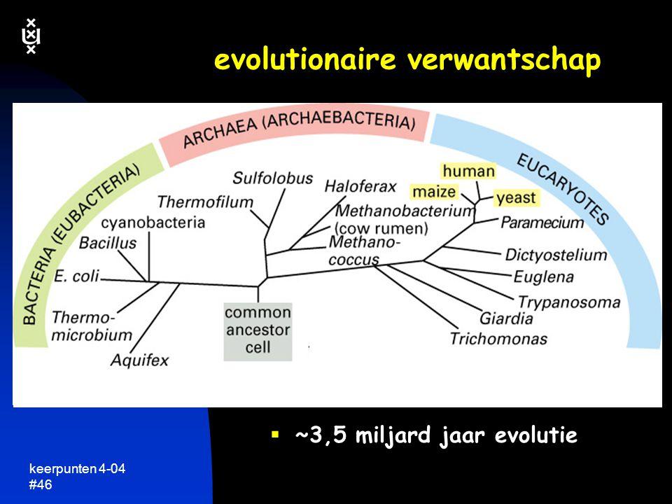 keerpunten 4-04 #45 leven: één succesvolle basisformule  zelfde basis-principes voor alle(!) levende organismen op aarde genetische informatie altijd in DNA (of RNA) opgeslagen zelfde genetische code zelfde eiwitten/enzymen doen het werk zelfde basisprincipes van de organisatie van de cel etcetera