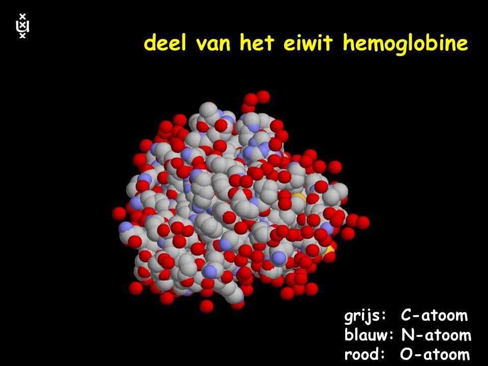 keerpunten 4-04 #57 eiwitten de werkpaarden van de cel keerpunten in de biologie
