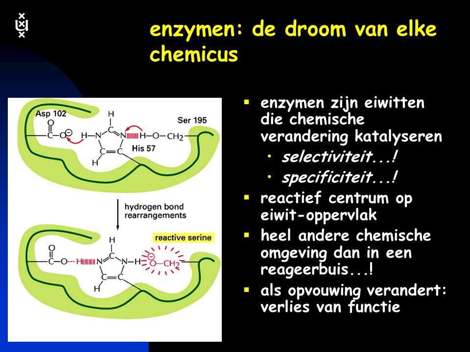 keerpunten 4-04 #71 eiwitten binden andere moleculen via veel zwakke precies passende interacties  specificiteit precies pas  affiniteit veel zwakke