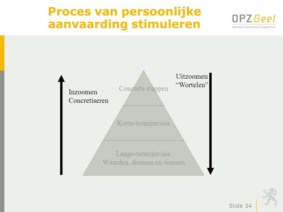 Slide 34 Proces van persoonlijke aanvaarding stimuleren Concrete stappen Korte-termijnvisie Lange-termijnvisie Waarden, dromen en wensen Inzoomen Concretiseren Uitzoomen Wortelen