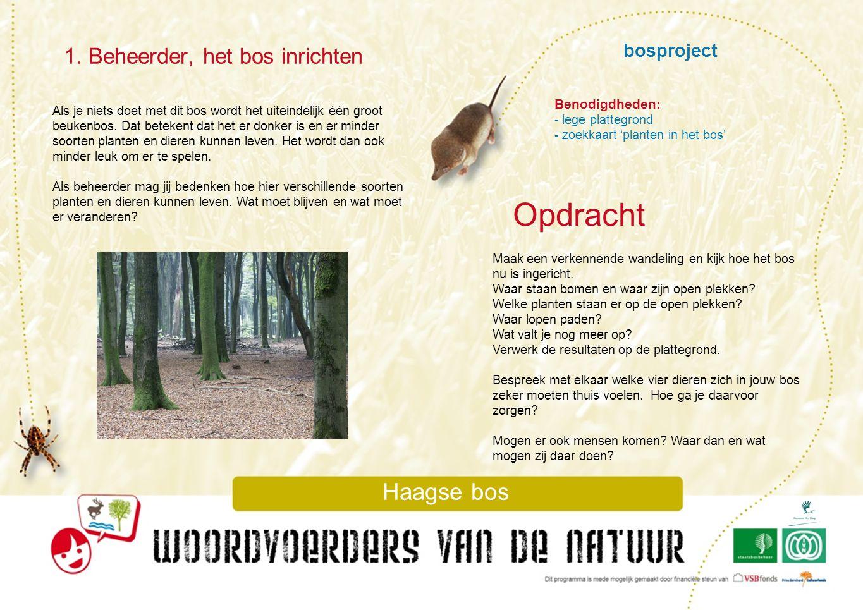 bosproject 1. Beheerder, het bos inrichten Haagse bos Als je niets doet met dit bos wordt het uiteindelijk één groot beukenbos. Dat betekent dat het e