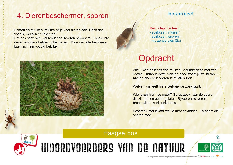 bosproject 4. Dierenbeschermer, sporen Haagse bos Bomen en struiken trekken altijd veel dieren aan. Denk aan vogels, muizen en insecten. Het bos heeft