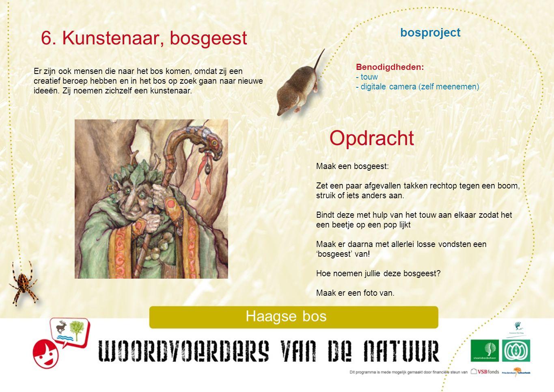 bosproject 6. Kunstenaar, bosgeest Haagse bos Er zijn ook mensen die naar het bos komen, omdat zij een creatief beroep hebben en in het bos op zoek ga