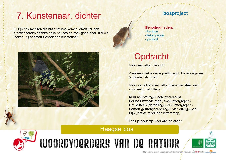 bosproject 7. Kunstenaar, dichter Haagse bos Er zijn ook mensen die naar het bos komen, omdat zij een creatief beroep hebben en in het bos op zoek gaa