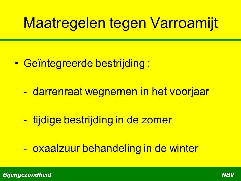 Maatregelen tegen Varroamijt Geïntegreerde bestrijding : - darrenraat wegnemen in het voorjaar - tijdige bestrijding in de zomer - oxaalzuur behandeling in de winter BijengezondheidNBV