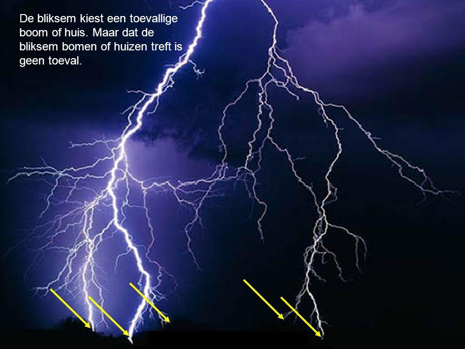 De bliksem kiest een toevallige boom of huis. Maar dat de bliksem bomen of huizen treft is geen toeval.