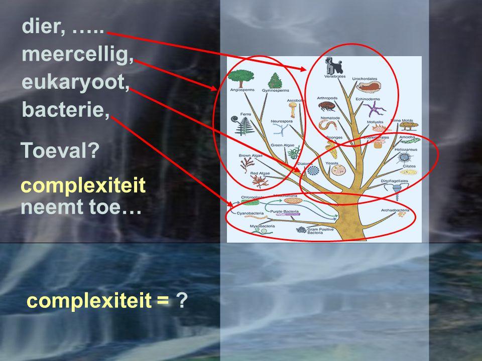 Antwoord via algemene systeemhierarchie.