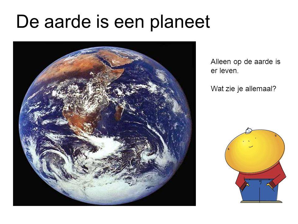 De aarde is een planeet Alleen op de aarde is er leven. Wat zie je allemaal?