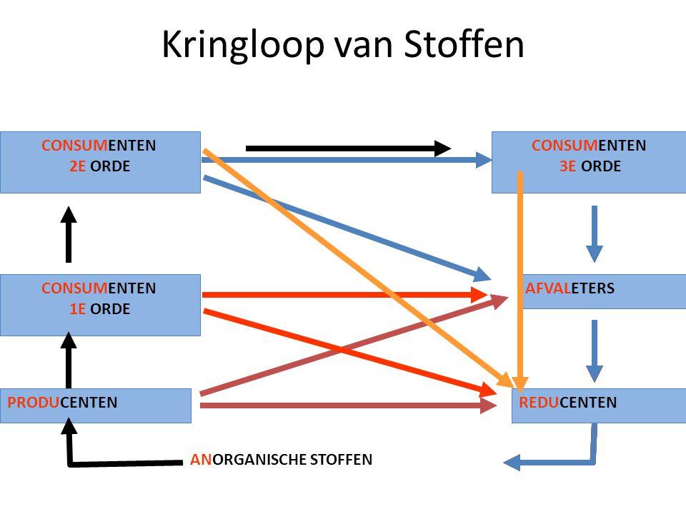 Kringloop van Stoffen PRODUCENTENREDUCENTEN CONSUMENTEN 2E ORDE CONSUMENTEN 1E ORDE CONSUMENTEN 3E ORDE AFVALETERS ANORGANISCHE STOFFEN