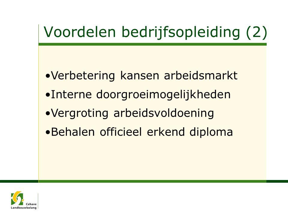Verbetering kansen arbeidsmarkt Interne doorgroeimogelijkheden Vergroting arbeidsvoldoening Behalen officieel erkend diploma Voordelen bedrijfsopleidi