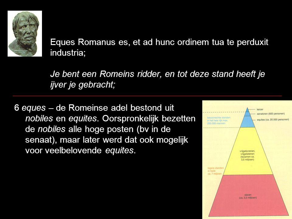 Eques Romanus es, et ad hunc ordinem tua te perduxit industria; Je bent een Romeins ridder, en tot deze stand heeft je ijver je gebracht; 6 eques – de