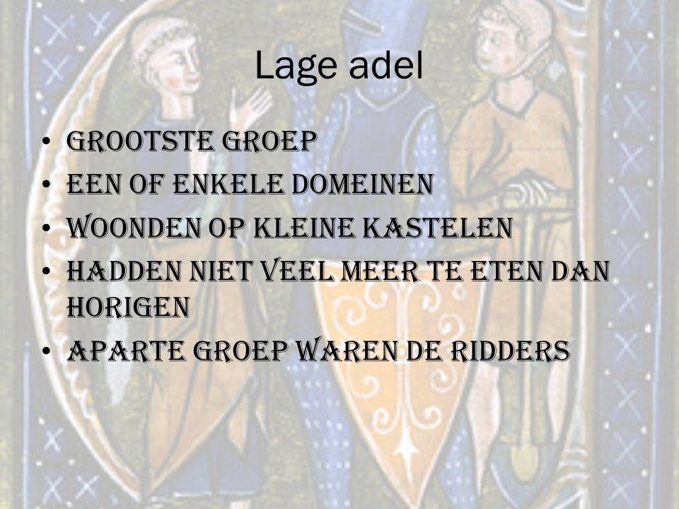 Lage adel Grootste groep Een of enkele domeinen Woonden op kleine kastelen Hadden niet veel meer te eten dan horigen Aparte groep waren de ridders