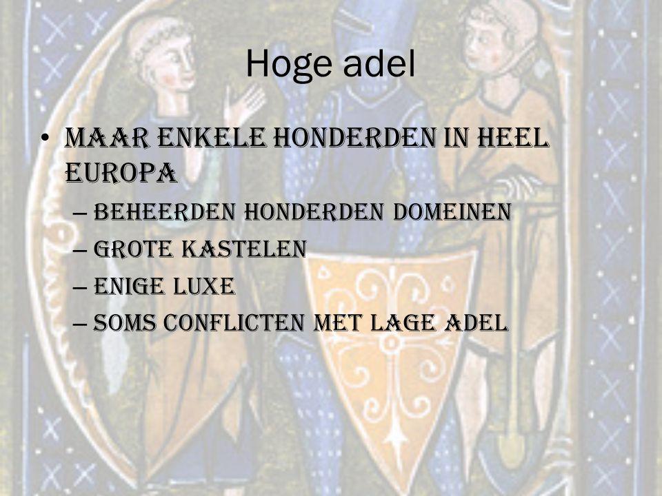 Hoge adel Maar enkele honderden in heel Europa – Beheerden honderden domeinen – Grote kastelen – Enige luxe – Soms conflicten met lage adel