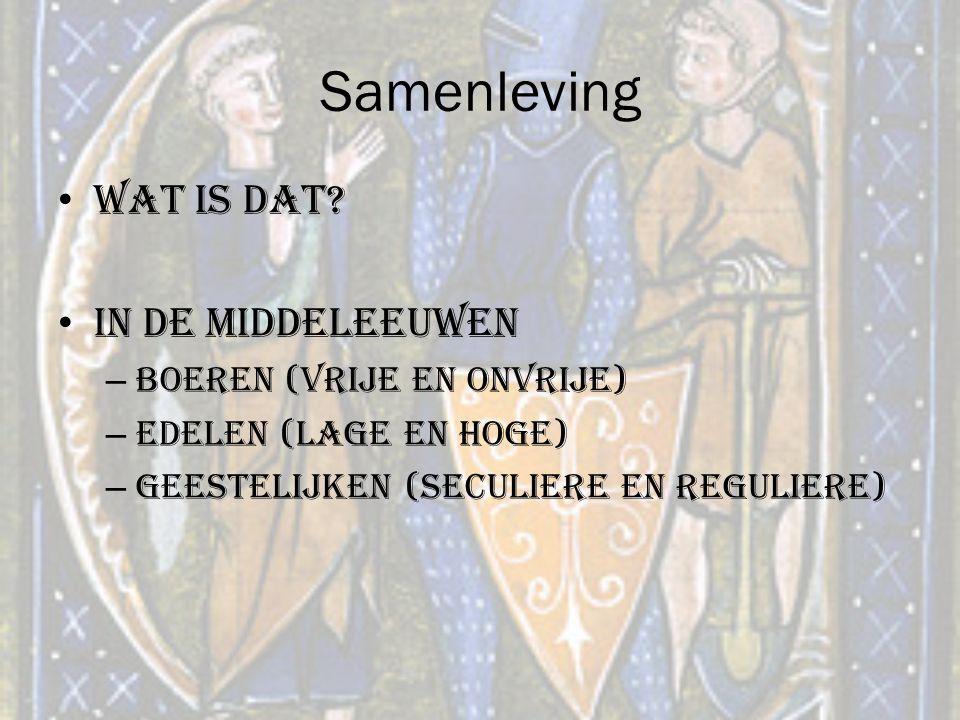 Samenleving Wat is dat? In de middeleeuwen – Boeren (vrije en onvrije) – Edelen (lage en hoge) – Geestelijken (seculiere en reguliere)