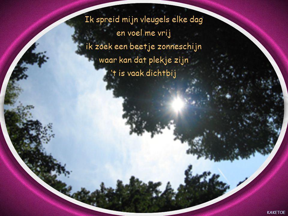 KAKETOE Ik spreid mijn vleugels elke dag en voel me vrij ik zoek een beetje zonneschijn waar kan dat plekje zijn 't is vaak dichtbij