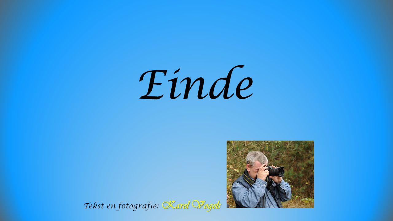 Einde Karel Vogels Tekst en fotografie: Karel Vogels
