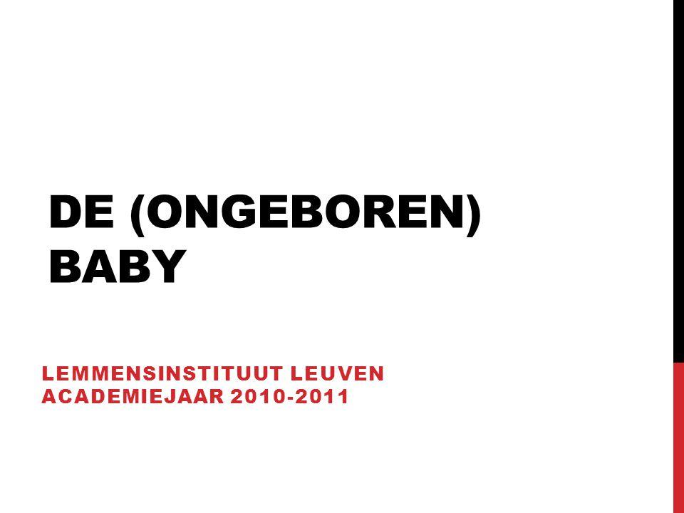 DE (ONGEBOREN) BABY LEMMENSINSTITUUT LEUVEN ACADEMIEJAAR 2010-2011